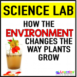 Do this easy science lab with your students to see how something as small as changing the color of the water changes how things grow and how a dirty environment causes things to die more quickly.